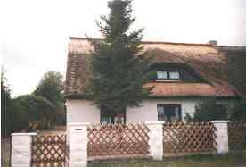 Ferienhaus Ferienhaus mit Reetdach
